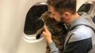 Tombul kedi uçağa alınmayınca sahibi başka kediyi tarttırdı