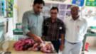 Hindistan'da dört bacaklı üç kollu kız bebek dünyaya geldi