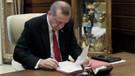Erdoğan, Milli Piyango İdaresi Genel Müdürü ile 18 bürokratı görevden aldı
