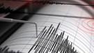 Son dakika: Marmara Denizi'nde deprem! İstanbul'dan da hissedildi