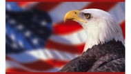 Koşşş vatandaş koş!!! ABD bu yıl 2000 Türk alıyor!!!