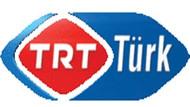 TRT Türk'te kaç kişi çalışıyor? Arınç kaç demişti, şimdi ne dedi?