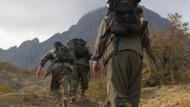 PKK'nin çekilmesi durursa süreç biter mi?