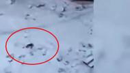 Rusya'da korkunç bungee jumping kazası