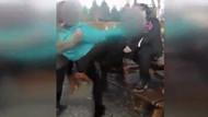 Kız öğrencilerin kavgası kamerada