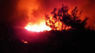 Marmaris'te korkutan orman yangını