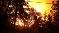 Şili'deki orman yangınları kontrol altına alınamadı: 6 ölü