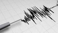 Ege Denizi'nde 4.6 büyüklüğünde deprem
