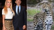 Vahşi doğa sergisinde leoparlı etek giyen Işıl Reçber olay oldu