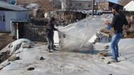 Doğu'da Sibirya soğukları: Ardahan -26.3'ü gördü