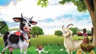 Bakanlıktan Çiftlik Bank hakkında suç duyurusu