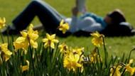 Baharın müjdecisi ilk cemre 19-20 Şubat'ta düşecek