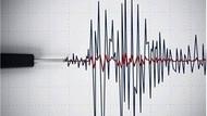 Son dakika haberler: Bodrum'da 4.1 ve 3.3'lük iki deprem meydana geldi