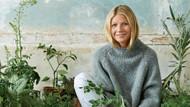 Gwyneth Paltrow'un çalışan kadınlar için hazırladığı detoks programı