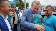 Erdoğan'dan yeni bir devlet açıklaması: Hepsi hikaye