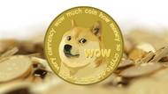 Parodi para Dogecoin'in çılgın yükselişi: 2 milyar doları aştı