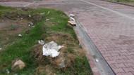 Oyun oynayan çocuklar toprağı kazınca bebek cesedi buldu
