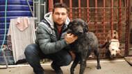 Kazada yaralanan köpeği için hukuk mücadelesi veriyor