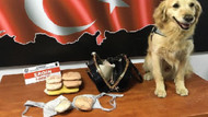 Otobüste basılan kadın kuryenin sütyeninden 2,5 kilo eroin çıktı