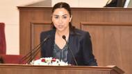 KKTC Meclisi'nde Barbaros Şansal tartışması