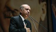 Erdoğan'dan Kore barışına flaş açıklama