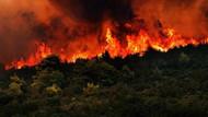 2411 orman yangınından 1280'inin sebebi bilinmiyor
