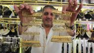 Düğünlerde sahte altın dönemi! İmitasyon takılar büyük ilgi görüyor