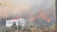 Bodrum'da yangın! Yerleşim yerine 5 metreye kadar yaklaştı!