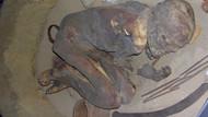 Tarihi Mısır uygarlığı mumyalarının sırrı çözüldü