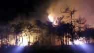 Marmaris'te 10 hektar alan kül oldu