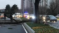 Son dakika: Ataköy'de dehşet anları! Ağacı bile devirdi