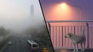 İstanbul güne sisle uyandı: Vapur seferleri iptal