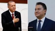 Erdoğan Babacan iddiası şaşırttı! Abdulkadir Selvi kulis yazdı
