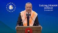 Erdoğan: 2020 yılına ait bazı müjdelerimizi paylaşmak istiyorum