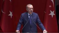 Erdoğan'ın termik santral vetosuyla ilgili flaş açıklama