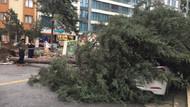 Meteoroloji uyardı: Şiddetli rüzgar devam edecek; ağaç devrilmesi ve çatı uçmaları...