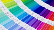 Pantone 2020'ye damgasını vuracak rengi açıkladı