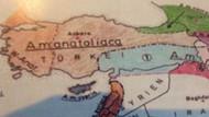 Türkiye'yi bölüyor denilen harita arıcılık haritası çıktı