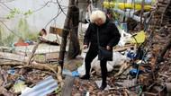 Bolu'da ayakları kesilmiş kedi ölüsü bulundu