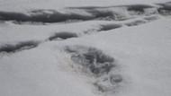 Hindistan ordusu: Yeti canavarının ayak izini bulduk