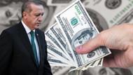 WSJ: TL, Dolar veya Euro'ya sabitlensin, Erdoğan'ın seçenekleri tükeniyor