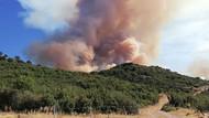 Afyon'da orman yangını çıktı
