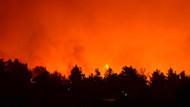 Son dakika: Gelibolu'daki orman yangınına sabaha kadar müdahale edilemedi