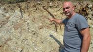 Balıkesir'de yol kenarında insan kemiği bulan adam dehşete düştü