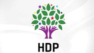 HDP kayyum atamalarına karşı yol haritasını çizdi