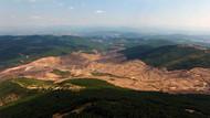 Çiğdem Toker: Kaz Dağları'nda altın arayan Alamos Gold bile siyanür kullanılacağını söylüyor