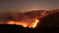 İzmir'deki ormanlar rant uğruna mı yakılıyor?