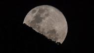 İsrail'in Ay'a çakılan uzay aracında binlerce su ayısı varmış: Uyduda yaşam bulma ihtimali arttı