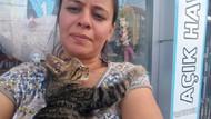 Pitbull saldırısında öldü sanılan yavru kediyi o kurtardı