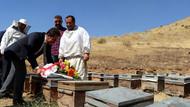 Arıcılar dua sırasında saldıran arıların kovanının üzerine çiçek bıraktı